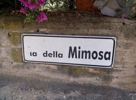 Comunicato Stampa: Fognatura di via della Mimosa, dopo 30 anni il via ai lavori