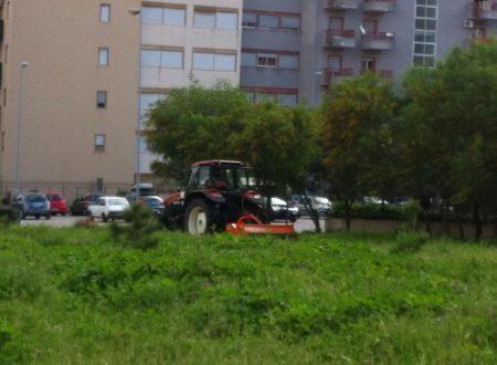 Comunicato Stampa: Villa Verdinois, una scuola dona 70 alberi