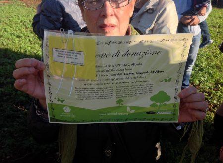 Comunicato Stampa: Nuovi alberi al parco Uditore, oltre venti scuole piantano gli agrumi