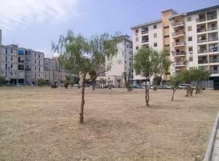 Largo Verdinois, concluso l'intervento di bonifica