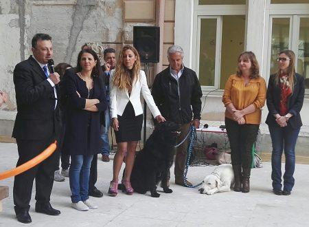 Pet therapy a Palermo, cani e conigli entrano in ospedale