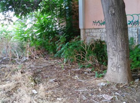 Bonificata l'area accanto la scuola Mazzini, diventerà un orto urbano