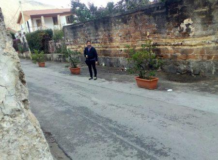 Borgo Molara, eliminata la discarica: nuovi cassonetti e piante ornamentali