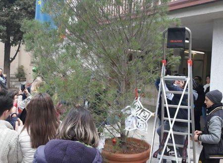 Albero di Natale con materiale di riciclo alla Quarta: gli alunni lo addobbano